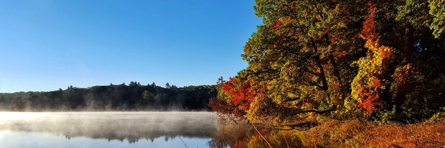 7 Activities to Celebrate Autumn