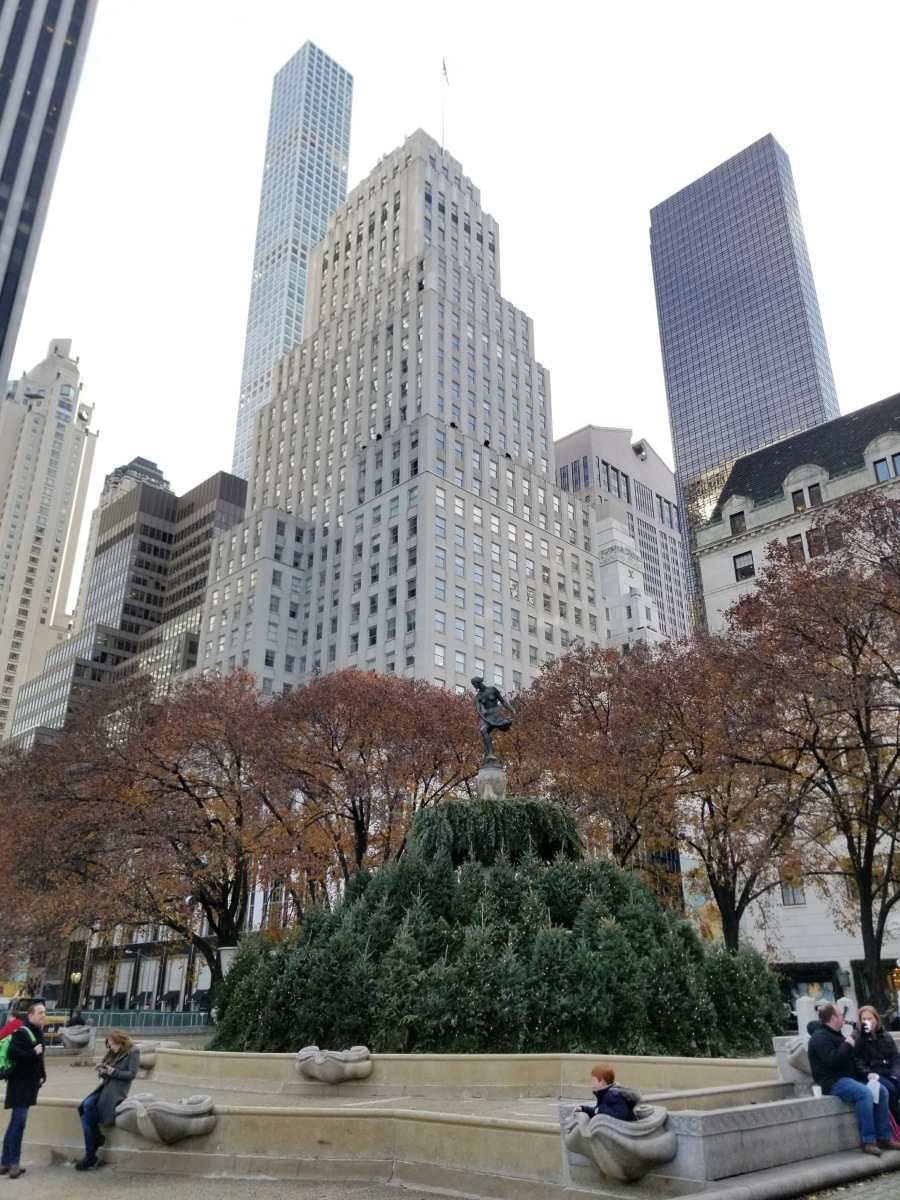 Christmas trees in Fountain