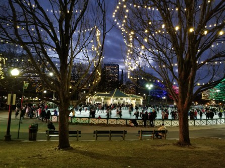 Boston Frog Pond in Winter at Night