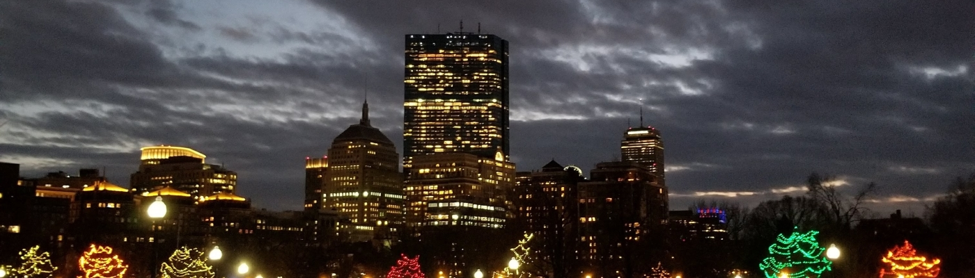 Boston Common Lights and Skyline