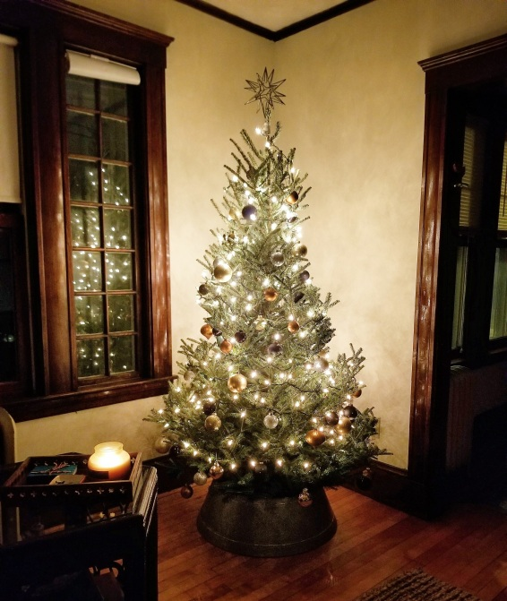 Photo 3: First live Christmas Tree in Watertown Home
