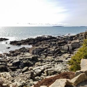 Otter Cliff - Acadia National Park, Maine