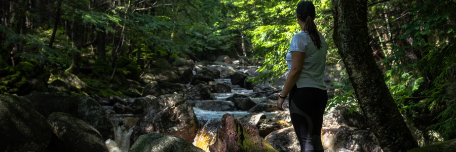 Georgiana Falls - 17 Photos to Inspire You to Visit the Beauty of the Granite State