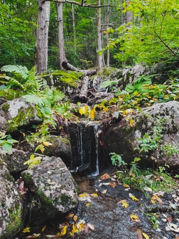 Date Day - Autumnal Equinox, Glendale Falls