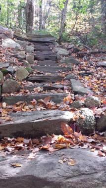 Favorite Fall Finds - Pack Monadnock, Peterborough, NH