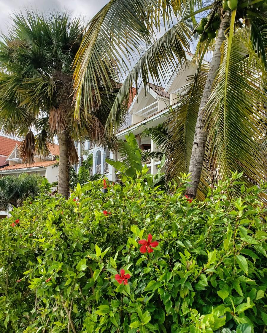 Taino Beach Resort Freeport Grand Bahama