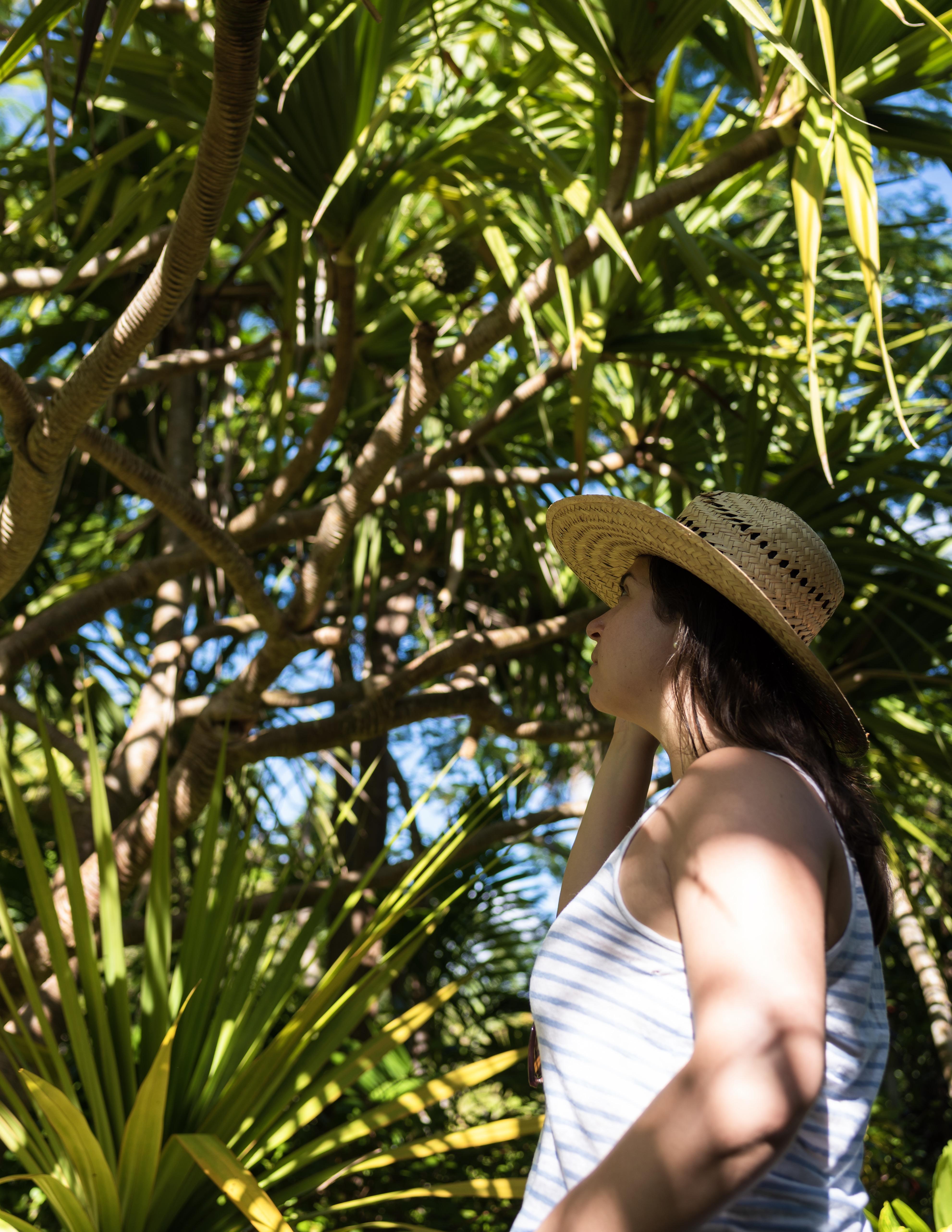 The Garden of the Groves Grand Bahama Bahamas